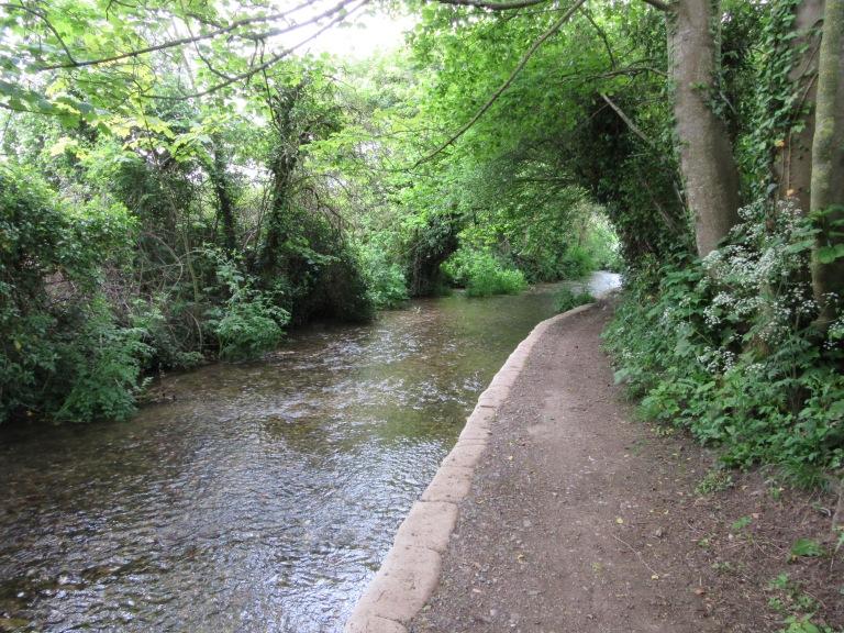 A classic Dorset chalk stream